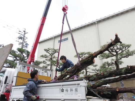 やむなく切った木々も再活用します。