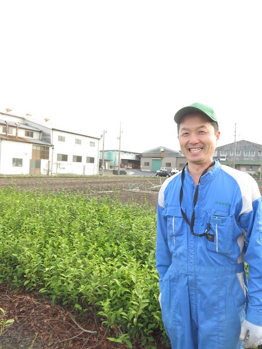 三重県はお茶の産地で四日市水沢地域の萩村製茶さんです。農林水産大臣賞を得られました
