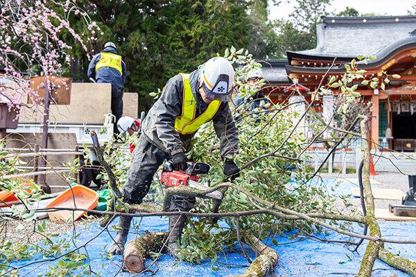 伐採から出た枝葉の処理