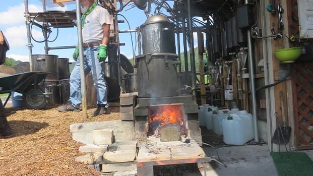 長岡天満宮の楠から作るアロマ