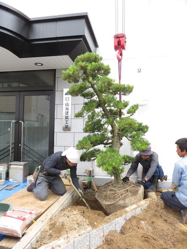 ②立水栓工事と樹木の植栽