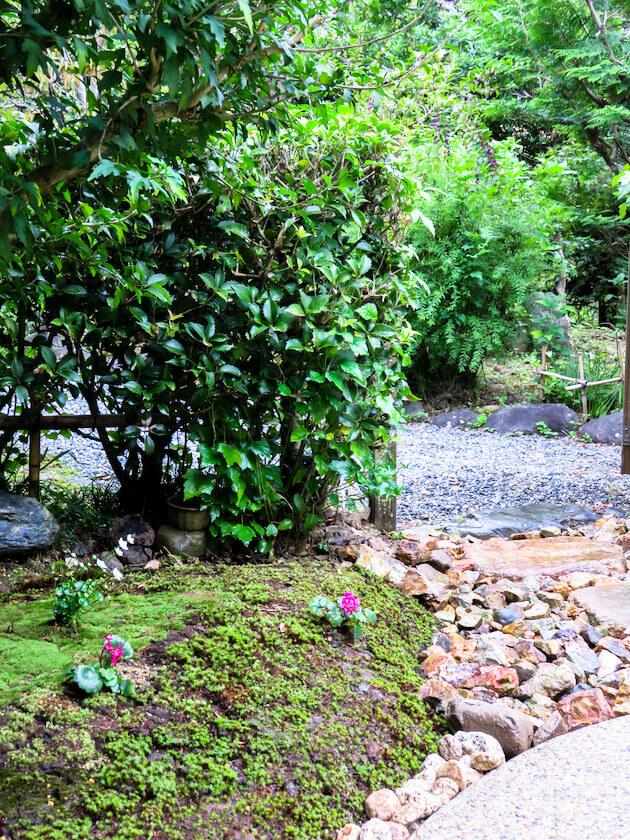 築山には日当たりに強い杉苔と木の足元には陰に強い山苔を植え、可憐な山野草が周囲の環境に溶け込む。